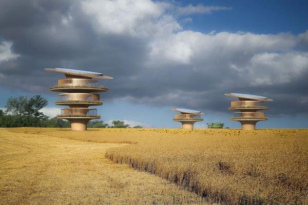 sunflower-house-koichi-takada-architects-2