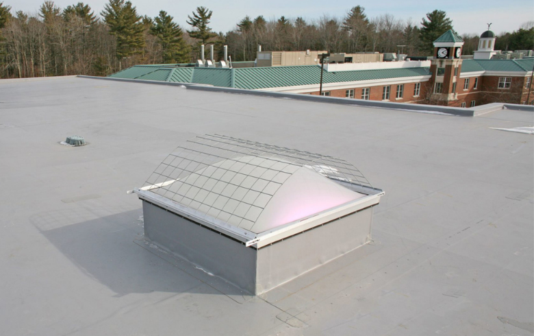 VELUX Commercial EcoSky Dome with Fall Protection Screen